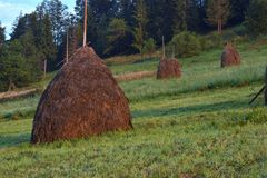 Summer landscape in mountains with traditional hay stacks on hillside. Typical rural scenery of Carpathians Stock Photos
