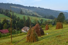 Summer landscape in mountains with traditional hay stacks on hillside. Typical rural scenery of Carpathians Royalty Free Stock Images