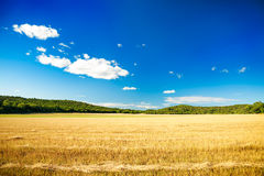 Summer Landscape with Mown Wheat Field and Sky Stock Photos