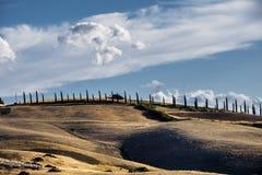 Summer landscape near Asciano Royalty Free Stock Photos