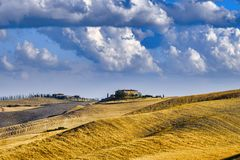 Summer landscape near Asciano Stock Photo