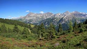 Summer landscape near Gstaad Stock Photo