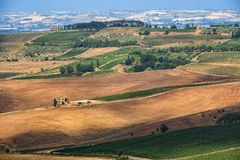 Summer landscape near Montepulciano Stock Image
