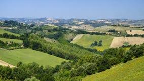 Summer landscape near Monterubbiano Fermo, Marches Royalty Free Stock Photos