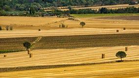 Summer landscape near Perugia Stock Images