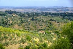 Summer landscape near Volterra, Tuscany Stock Image