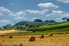 Summer landscape near Volterra, Tuscany Stock Photo