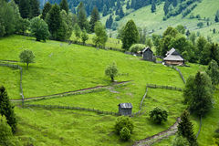 Summer Landscape in North of Romania Royalty Free Stock Images