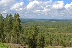 Summer landscape in northern hills in finnish Lapland Stock Photos