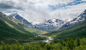 Summer landscape of Norway mountains and river in the canyon. Royalty Free Stock Photos