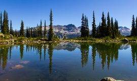 Summer Landscape Of Blackcomb Mountain Royalty Free Stock Photo