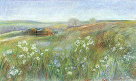 Summer landscape. Oil pastel painting. Landscape with green meadows and wildflowers Stock Image