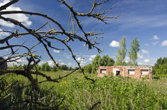 Summer  landscape  with old abandoned farm ruins Stock Photography