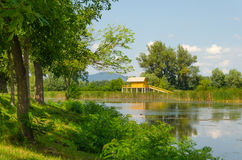 Summer landscape at one of the backwaters of the Tisza river in Tiszalok, Hungary.  Royalty Free Stock Image