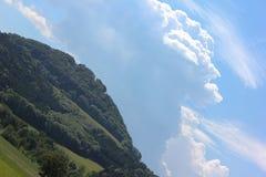 Summer landscape 45 orthogonal Royalty Free Stock Photos