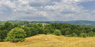 Summer landscape panorama Stock Photos