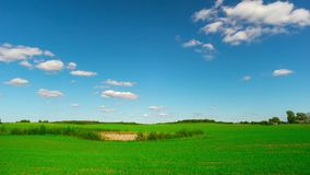 Summer landscape, panoramic timelapse stock video footage