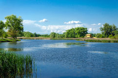 Summer landscape. The place is one of the backwaters of the Tisza river in Tiszalok, Hungary. Stock Photo
