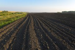 Summer landscape with plowed field royalty free stock photos