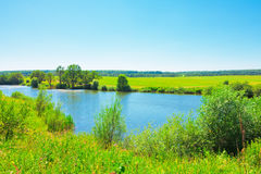 Summer landscape with pond Royalty Free Stock Photo
