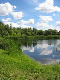 Summer landscape: pond in the park Stock Photography