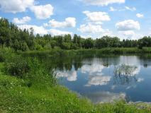 Summer landscape: pond in the park Stock Image