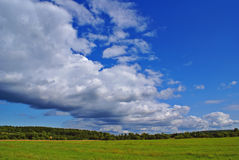Summer landscape q. Summer landscape with cloudy sky, green grass and trees Royalty Free Stock Photo