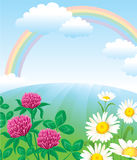 Summer landscape with rainbow. And flowers Royalty Free Stock Photo