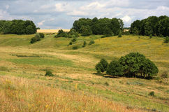 Summer landscape ravine meadow Royalty Free Stock Photography