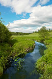 Summer landscape with river Royalty Free Stock Images