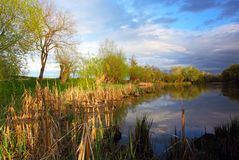 Summer landscape with river. Royalty Free Stock Images