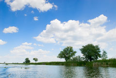 Summer landscape with river. Stock Images