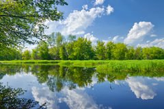 Summer landscape river clouds blue sky green trees pond Royalty Free Stock Photography