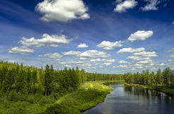 Summer landscape with river and clouds. Forest Royalty Free Stock Image