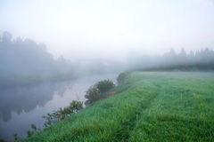 Summer landscape with the river and fog Stock Image
