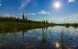 Summer landscape with river, forest, cliffs and waves and sun. Summer landscape with river, forest, taiga, sky and sun Stock Photo