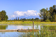 Summer landscape with river, forest and island Stock Photos