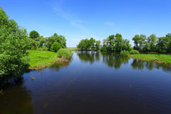 Summer landscape with river and green trees stock images