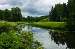 Summer landscape with river in the park of Pavlovsk Royalty Free Stock Images