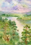 Summer landscape with river, pine, trees and deer Stock Photos