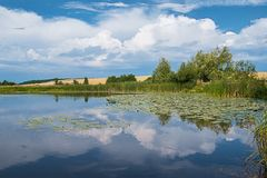 Summer landscape: river, reflection of clouds in the water, sky Stock Photography