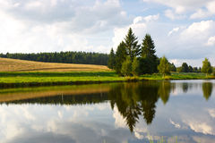 Summer landscape with a river and trees Stock Image
