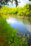 Summer landscape with river wood and sky Stock Photography