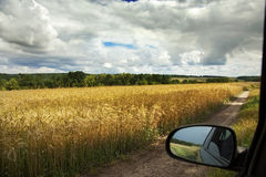 Summer landscape with road and meadows Stock Photo