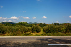 Summer landscape with road, trees, mountains and clouds. Stock Images