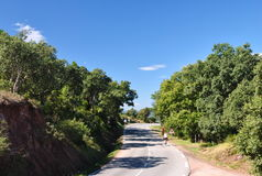 Summer landscape: the  road under the bright sky. Surrounded by trees Royalty Free Stock Photography