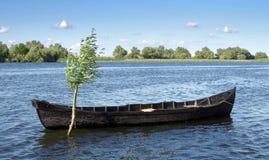 Summer Landscape. Rowing Boat - Danube Delta, Landmark Attraction In Romania. Danube River Royalty Free Stock Images