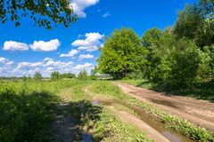 Summer landscape. Rural dirt road along the forest, Moscow suburbs, Russia. Stock Photo