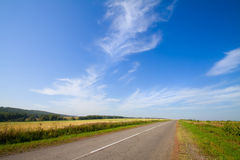 Summer landscape with rural road Royalty Free Stock Photos