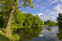 Summer landscape, Russia Royalty Free Stock Photos